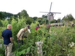 DuurzameBorrel_juli2015_GroeneSchenk